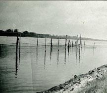 Historisches Foto Brauer's