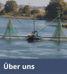 Über die Firma Brauer's Fischräucherei